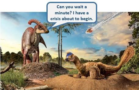 من الصعب أن نطلب حدوث أزمة في وقت أكثر ملاءمة.